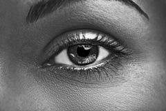 Состав очарования сияющий металлический профессиональный красивейший близкий глаз вверх Стоковое фото RF