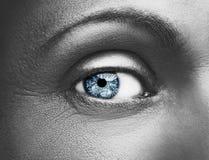 Состав очарования сияющий металлический профессиональный красивейший близкий глаз вверх Стоковая Фотография RF