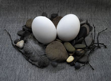 Состав пасхи с яичком и пером Стоковое Изображение RF