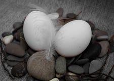 Состав пасхи с яичком и пером Стоковая Фотография RF
