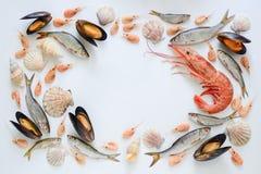 Состав продукта моря Стоковые Фото