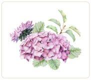 Состав различных цветков и заводов весны Стоковое Изображение