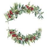 Состав рождества акварели флористический Вручите покрашенные ветви snowberry и ели, красные ягоды с листьями, конусом сосны Стоковое фото RF
