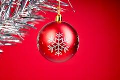 Состав рождества ветвей ели и ягод калины на белой предпосылке Стоковое Изображение