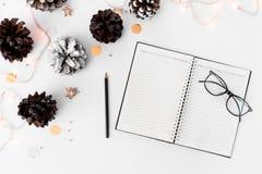 Состав рождества дневника на время рождества конусы и украшения рождества на белой предпосылке Стоковая Фотография RF