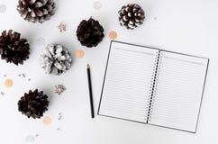 Состав рождества дневника на время рождества конусы и украшения рождества на белой предпосылке Стоковая Фотография