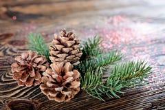 Состав рождества от ветвей спруса и конусов на посватать стоковая фотография rf