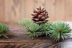 Состав рождества от ветвей спруса и конусов на посватать стоковая фотография