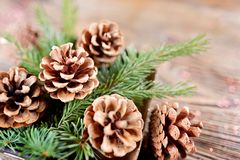 Состав рождества от ветвей спруса и конусов на посватать стоковое фото