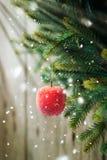Состав рождества с красным Apple Стоковая Фотография