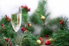 Состав рождества, стекло Шампаря, сосна разветвляет, красная рябина Стоковое Фото