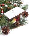 Состав рождества с ветвями birdhouse и ели Стоковая Фотография