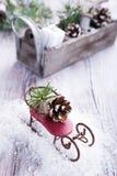 Состав рождества с санями, pinecone и украшением Стоковое Изображение