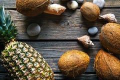 Состав свежих ананаса и кокосов на деревянной предпосылке Стоковая Фотография