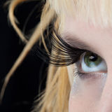 состав способа глаза женский самомоднейший Стоковые Фото