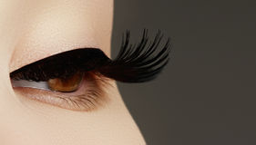 Состав стороны красоты женщина с ручкой Расширения ресниц Совершенный сделайте Стоковая Фотография