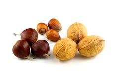 Состав сладостных каштанов, фундуков и грецких орехов Стоковые Фото