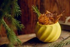 Состав с малыми красными яблоками, высушенное гранатовое дерево осени в винтажном плантаторе, ветвях лиственницы в глиняном горшк Стоковые Фото