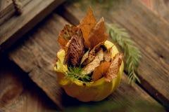 Состав с малыми красными яблоками, высушенное гранатовое дерево осени в винтажном плантаторе, ветвях лиственницы в глиняном горшк Стоковое фото RF
