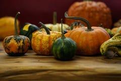 Состав с тыквами хеллоуина Стоковые Изображения