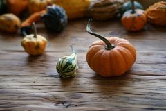 Состав с тыквами хеллоуина стоковое фото rf