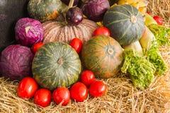 Состав с фруктами и овощами закрывает вверх Стоковые Фотографии RF