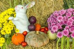 Состав с фруктами и овощами закрывает вверх Стоковая Фотография