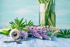 Состав с цветками букета голубых lupines, старое деревенское sci Стоковое Изображение