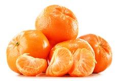 Состав с tangerines на белой предпосылке Стоковая Фотография