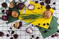Состав луков от различной Стоковая Фотография RF