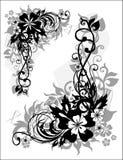 состав флористический Стоковые Изображения