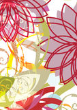состав флористический Стоковое фото RF