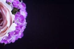 Состав цветков в неоновом свете Стоковые Изображения