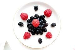 Состав ягод леса изолированный на белой предпосылке Стоковые Фотографии RF
