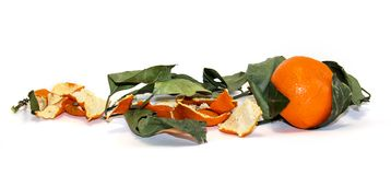 состав яркого оранжевого плодоовощ мандарина, кож и увяданного пастбища Стоковое Изображение RF