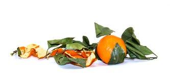 состав яркого оранжевого плодоовощ мандарина, кож и увяданного пастбища Стоковое Изображение