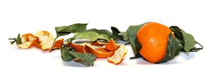 состав яркого оранжевого плодоовощ мандарина, кож и увяданного пастбища Стоковая Фотография