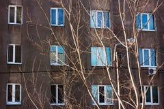 Состав Windows и ветвей Стоковые Изображения
