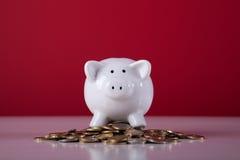 состоятельное банка piggy Стоковая Фотография RF