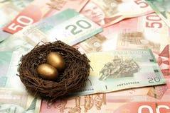 Состоятельное яйц из гнезда Стоковое Изображение RF