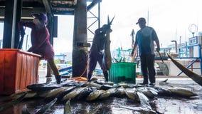 Состыкованная рыбацкими лодками гавань Chenggong удя извлекает липкую жидкость рыбной ловли Стоковые Изображения