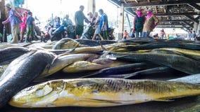 Состыкованная рыбацкими лодками гавань Chenggong удя извлекает липкую жидкость рыбной ловли Стоковое Фото