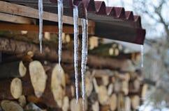 Сосульки от плавя снега, южной Богемии Стоковая Фотография RF