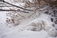 Сосульки и ледистые, который замерли ветви дерева на побережье Стоковые Фотографии RF