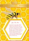 Сот и пчелы. Предпосылка вектора Стоковые Фотографии RF