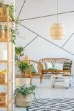 Софа, стул и заводы стоковое изображение