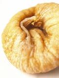 сохраненная смоква Стоковые Изображения