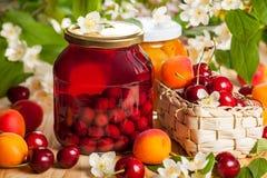 Сохраненные плодоовощ и ягоды Стоковые Изображения