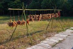 Сохраненные утка и мясо стоковые фотографии rf