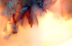 сохраненные цветки 14 стоковые изображения